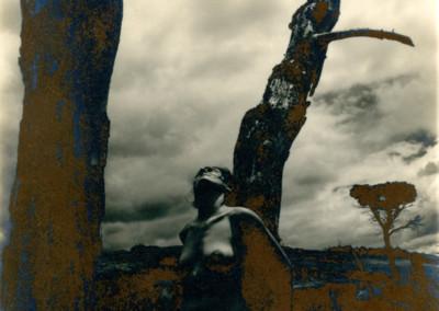 Título: Nu 3 (Desnudo 3) Proceso: Albúmina Copia original: 15 x 19, sobre papel SAUNDERS-ARCHES Obra expuesta: 60 x 79 (Digitalizada del original, impresa sobre lienzo) Fotografía  y Proceso: Jaume Estapé i Aliaga